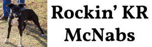 McNabShepherd.com logo